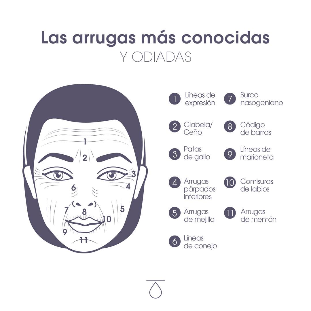 Clasificación en rostro de arrugas más conocidas